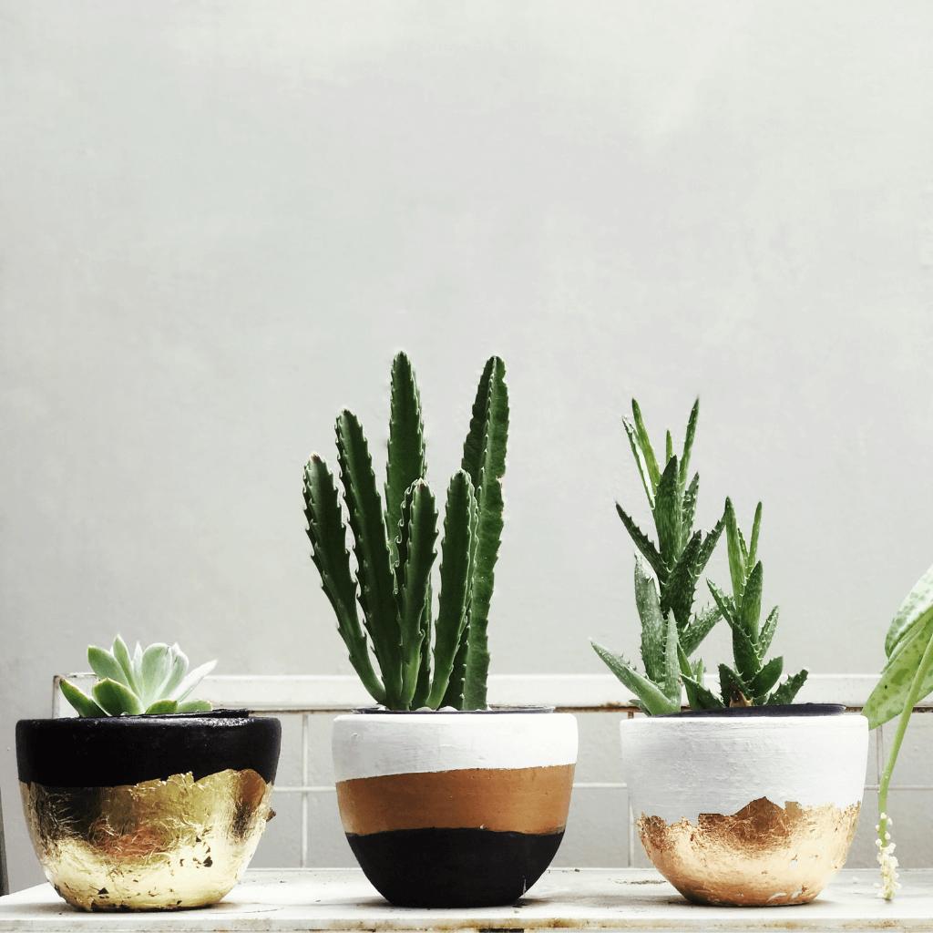 vaso-de-ceramica